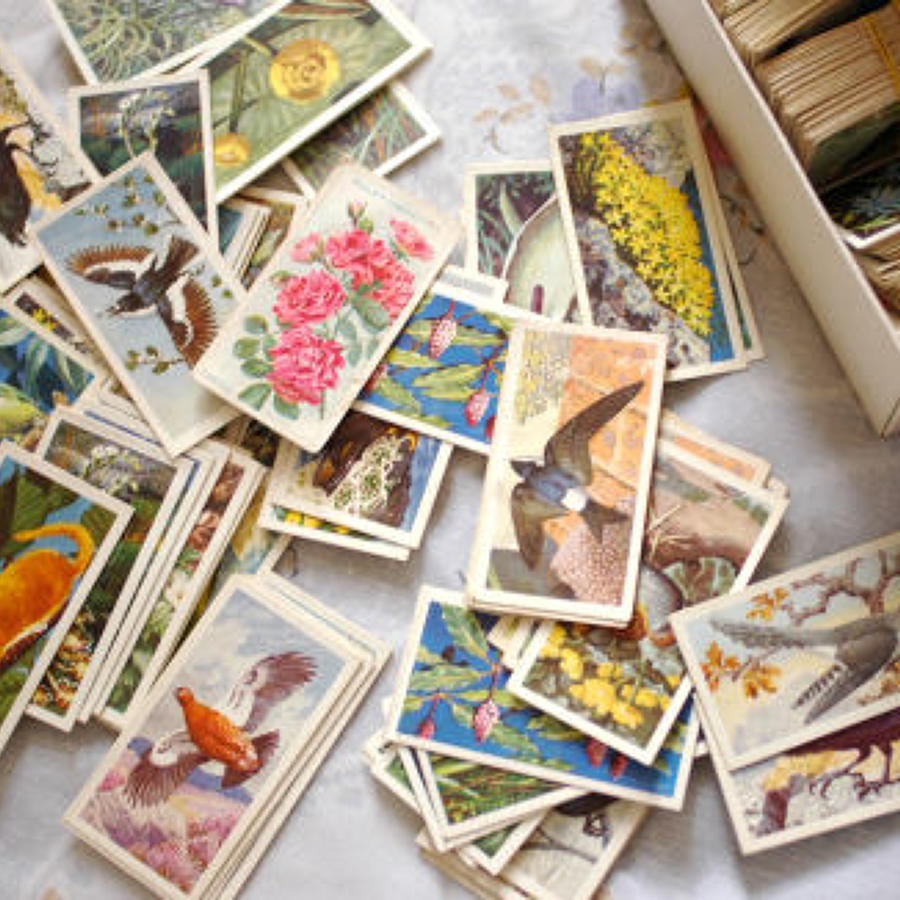 Collectable Cards (Tea and Cigarette Brands)
