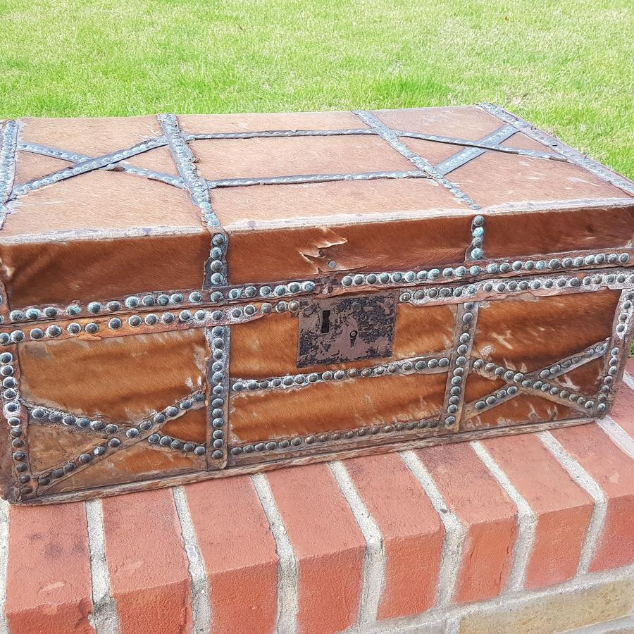 Early 19th Century Horse Hair And Copper Travelling Trunk