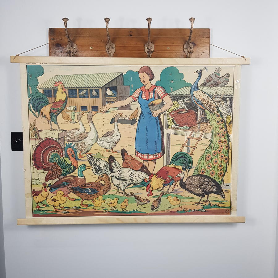 Large 1950s/60s French Double Sided School Poster - Village / Farm